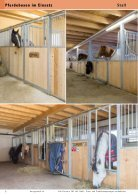 Pferdekatalog 2015/16 - Seite 6