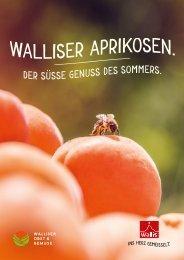 Aprikosen - So schmeckt das Wallis