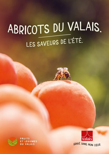 Abricots - le goût de l'excellence