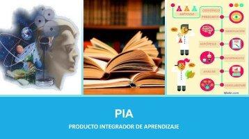 PIA Metodologia
