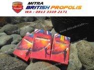 0813 3339 2171 (WA), Jual British Propolis Surabaya