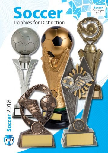 2018 Soccer Trophies for Distinction