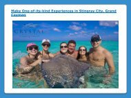 Experiences in Stingray City, Grand Cayman