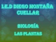 las plantas 1