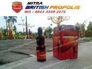 0813 3339 2171 (WA), Khasiat British Propolis Surabaya