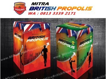 0813 3339 2171 (WA), Kegunaan British Propolis Surabaya