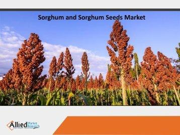 Sorghum & Sorghum Seeds