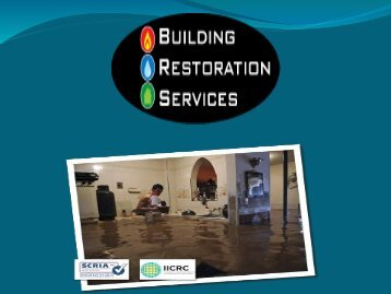 Building Restoration Services