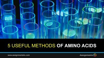 5 HELPFUL METHODS OF AMINO ACIDS