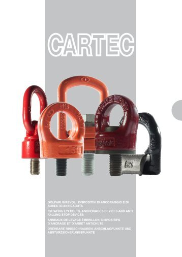 CARTEC Anschlagpunkte