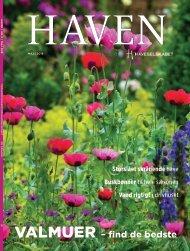 Haven_05_2018_Ipaper