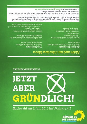 Grüner Flyer Wahlkreis 2