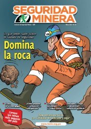 Seguridad Minera Edición 143