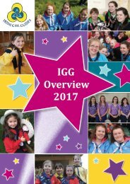 IGG Overview 2017