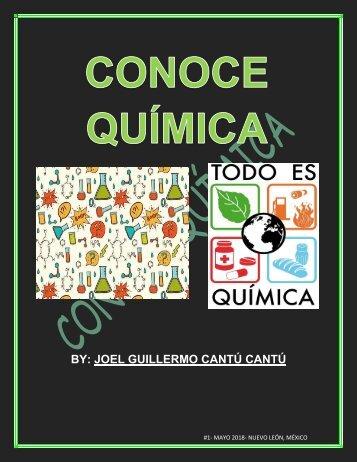 PIA QUIMICA