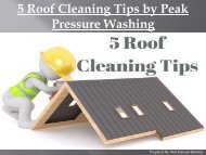 5 Roof Cleaning Tips by Peak Pressure Washing