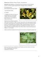 Brühen und Jauchen für Pflanzen im Garten - Page 3