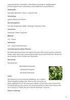 Ehrenpreis  Veronica officinalis - Page 2