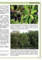 Ciudad Del Carmen | No. 8| 2018 - Page 7