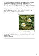 GänseblümchenTinktur bei unreiner Haut - Page 2