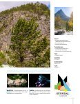 Fossenes rike 2018  - Sommermagasin for Sunndal - Page 3