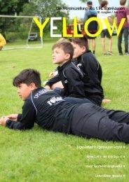 YELLOW | Vereinszeitung 1. FC Egenhausen Juni 2017