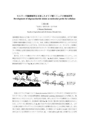 セルラーゼ機構解明を目指したオリゴ糖ミミックの開発研究 Development of ...