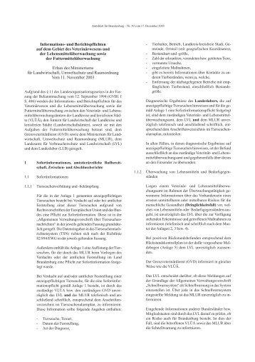 Informations- und Berichtspflichten auf dem ... - Brandenburg.de