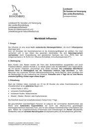 Merkblatt Influenza - Brandenburg.de