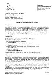 Merkblatt Norovirusinfektionen - Brandenburg.de
