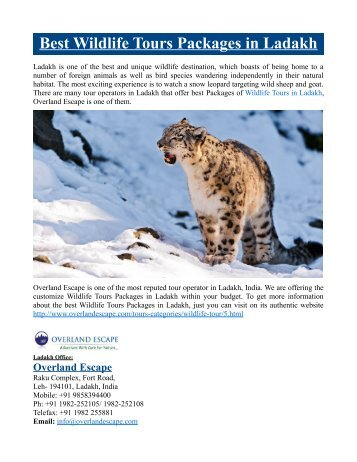 Best Wildlife Tours Packages in Ladakh