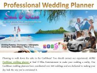 Professional Wedding Planner