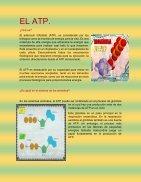 exposicion  - Page 2