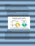 Trasporte celular - Page 2