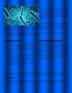 Dominio Bacteria - Page 3