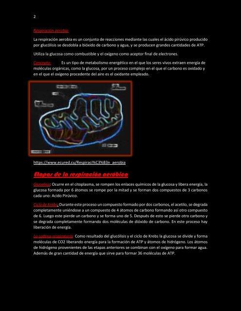 glucolisis respiracion aerobica y anaerobica