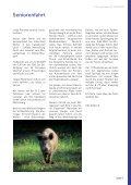 Innungs-News - Innung der Metallbauer und Feinwerkmechaniker ... - Seite 7