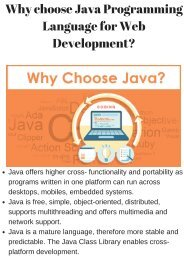 Why choose Java Programming Language for Web Development_