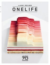 Land Rover ONELIFE 36 - IT