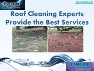 Roof Cleaning Experts Provide the Best Services