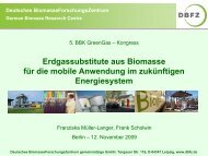 DBFZ_Mueller-Langer_Biomethan_2009-11.pdf