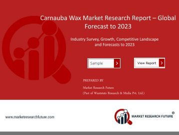 Carnauba Wax Market PDF