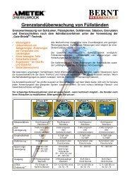 Grenzstandüberwachung von Füllständen  - Bernt GmbH