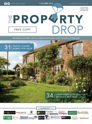 Property Drop Issue 29