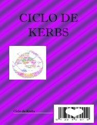 CICLO DE KERBS