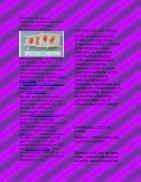 CICLO DE KERBS - Page 3