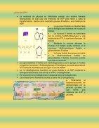 exposicion  - Page 3