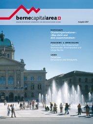 clusterorganisationen im kanton bern