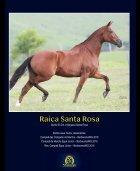 Revista completa 39 BAIXA - Page 4