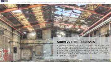 Surveys for Businesses